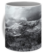 Snow Capped 45 Coffee Mug