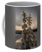 Snow Capped Sitka Spruce Coffee Mug