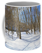Snow Covered Path  Coffee Mug