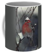 Snow Covered Pine Grosbeak Coffee Mug