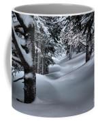 Snow Covered Trail Coffee Mug