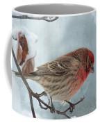 Snow Day Housefinch With Texture Coffee Mug
