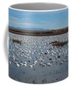 Snow Geese Bosque Coffee Mug