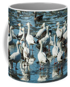 Snow Geese Discussion Coffee Mug