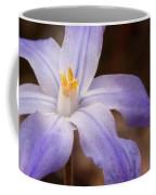 Snow Glories 2 Coffee Mug