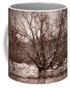Snow Imp 1 - Tree Covered With Snow January 2014 Coffee Mug