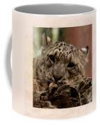 Snow Leopard 17 Coffee Mug