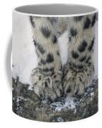Snow Leopard Feet Coffee Mug