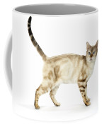 Snow Marble Bengal Cat Coffee Mug