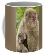 Snow Monkeys, Mother With Her Baby Coffee Mug