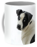 Snow Puppy Coffee Mug