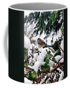 Snow Scene Of Little Bird Perched Coffee Mug