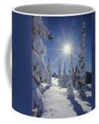 1m4882-snow Laden Tree Sunburst Coffee Mug
