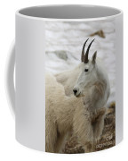 Snow White Mountain Goat Coffee Mug
