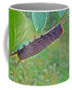 Snowberry Clearwing Hawk Moth Caterpillar - Hemaris Diffinis Coffee Mug
