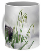 Snowdrops On Ice Coffee Mug
