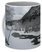 Snowed Under Valley Coffee Mug