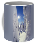 Snowscape Snow Covered Trees And Bright Sun Coffee Mug