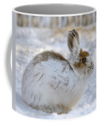 Snowshoe Hare In Winter Coffee Mug