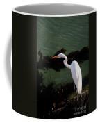 Great Egret Monterey Bay California  By Pat Hathaway Coffee Mug