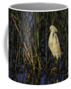 Snowy Egret In The Reeds Coffee Mug