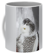 Snowy Owl 2 Coffee Mug