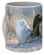 Snowy Owl Among The Rocks Coffee Mug
