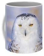 Snowy Owl Portrait Coffee Mug