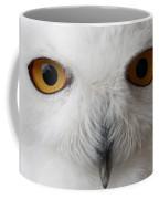 Snowy Owl Stare Coffee Mug