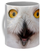 Snowy Owl Up Close And Personal Coffee Mug