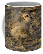 Snowy Plover Transformation Into A Spiderbird 1 Coffee Mug