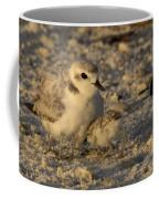 Snowy Plover Transforms Into A Spiderbird 4 Coffee Mug