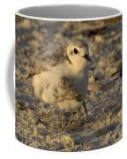Snowy Plover Transforms Into A Spiderbird 6 Coffee Mug