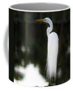 Snowy Showy Egret Coffee Mug