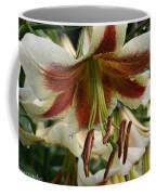 Snowy Wet Sienna Coffee Mug