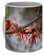 Snowy Witch Hazel Coffee Mug