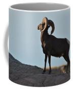 Soaking Up The Sun Coffee Mug