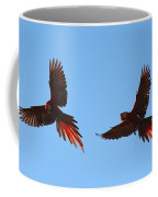 Soaring Coffee Mug