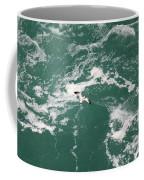 Soaring Over The Falls Waters Coffee Mug