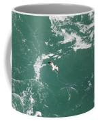 Soaring Over The Falls Waters Too Coffee Mug