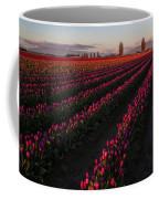 Soaring Spring Colors In Skagit Coffee Mug