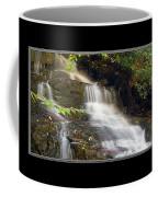 Soco Falls Small Cascade North Carolina Coffee Mug