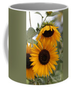 Soft Colors Sunflowers Coffee Mug