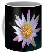 Soft Lullabye Coffee Mug