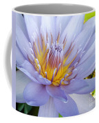 Soft Mauve Waterlily Coffee Mug