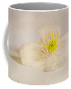 Soft Pink Flower Coffee Mug