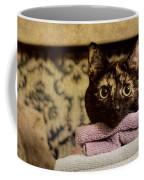 Soft Place To Fall Coffee Mug