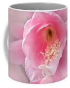 Soft..pink..delicate 2 Coffee Mug