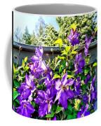 Solina Clematis On Fence Coffee Mug