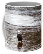 Solitary Eagle Coffee Mug